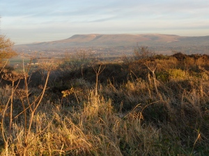 Pendle in Evening Sun from Kemple End