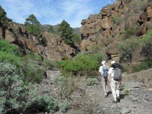 Arico upper gorge.