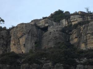 Arboli climbing