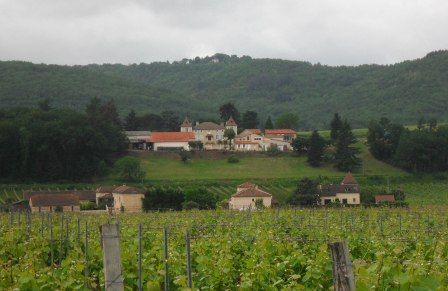 Looking back to Chateau Gaudou.