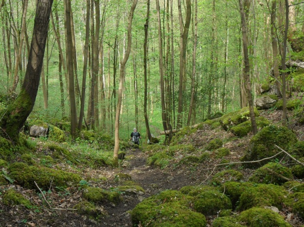 Descent into Deepdale Pond.