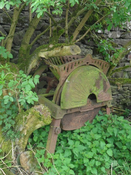 Old Root Shredder.