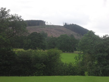 The balding Kemple End of Longridge Fell.