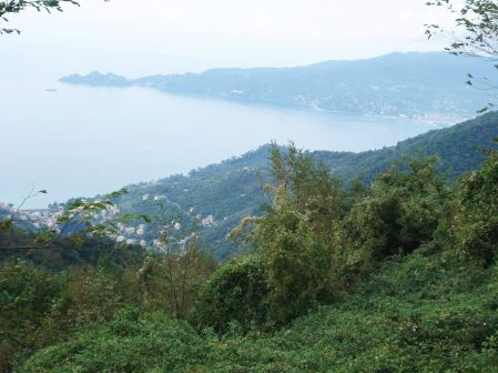 Looking across the Tigullio Gulf towards Portofino.